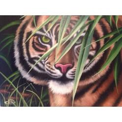 """Картина написанная маслом  """"Тигр"""" - 50 x 60 см"""