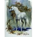 "Картина ""Белый конь"" - 80 х 60 см."