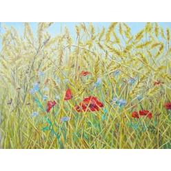"Картина ""Цветочное поле"", - 30 х 40 см, 2012 г."