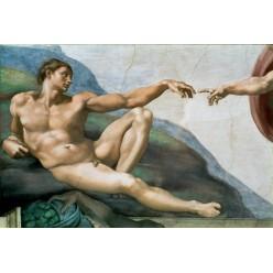 "Репродукция картины Микеланджело Буонарроти ""Сотворение Адама"", фрагмент (MLB-8194)"