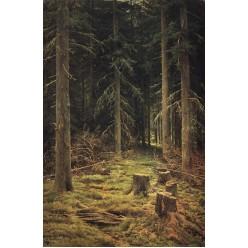 """Репродукция картины И. И. Шишкина """"Хвойный лес"""" (ISH-3136)"""